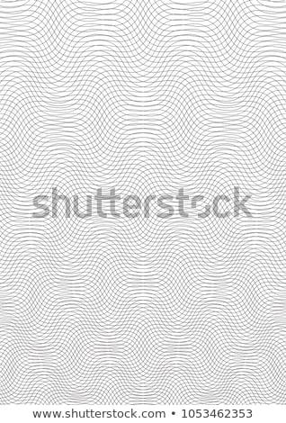 textuur · vector · sjabloon · meetkundig · grid · certificaat - stockfoto © leonardi