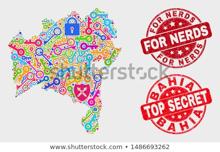 Vector Flat Lock Icon. Symbol about Limit Access or Safety Allow Concept. Stock photo © thanawong