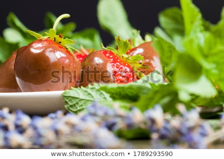 белый · коричневого · сахара · шоколадом · корицей · анис · Sweet - Сток-фото © justinb