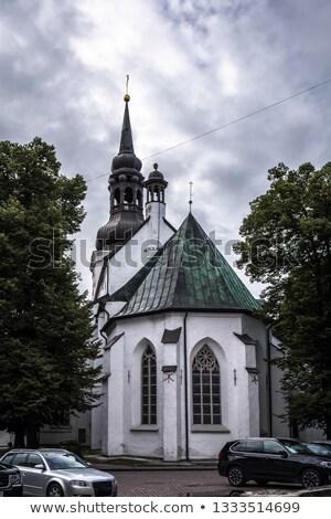 Cúpula igreja Tallinn sino torre catedral Foto stock © smartin69