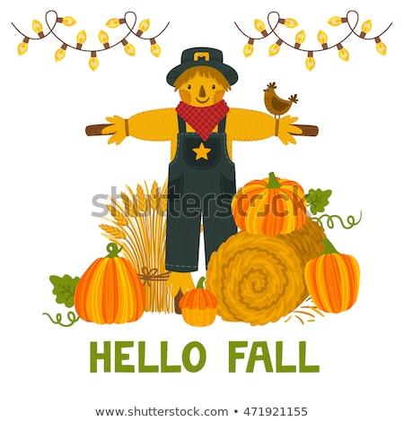 Halloween keret sütőtök madárijesztő kép illusztráció Stock fotó © Irisangel