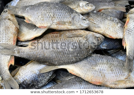 Gedroogd gezouten markt verkoop vis achtergrond Stockfoto © tang90246