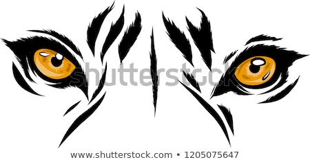Tigris illusztráció narancs feketefehér fekete szín Stock fotó © Morphart