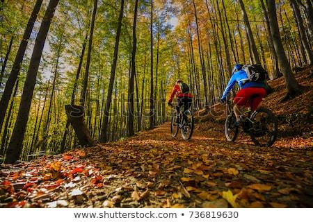 Stock photo: man enjoys ridimg mountain bike in the forest