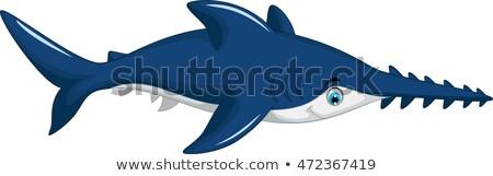 tubarão · animal · desenho · animado · ilustração · peixe · mar - foto stock © jawa123