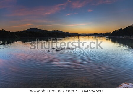 Serene autumn waterscape dawn Stock photo © Juhku