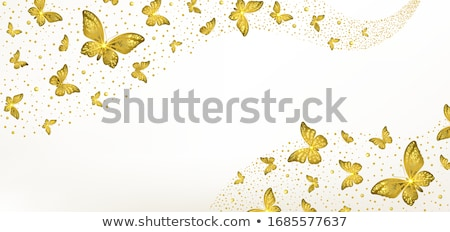 banner with gold wings of a butterfly stock photo © blackmoon979