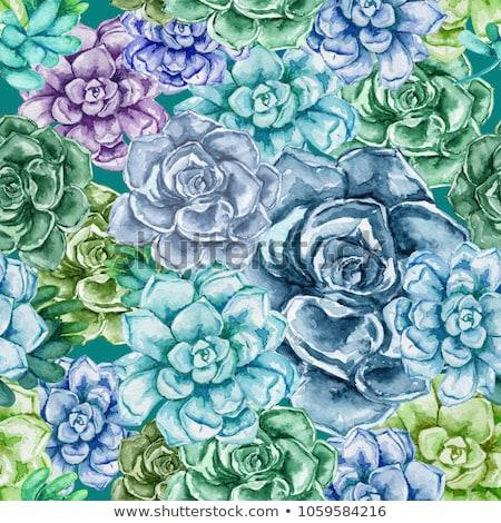 素朴な 結婚式のブーケ カラフル 花 ジューシーな 石 ストックフォト © Yatsenko