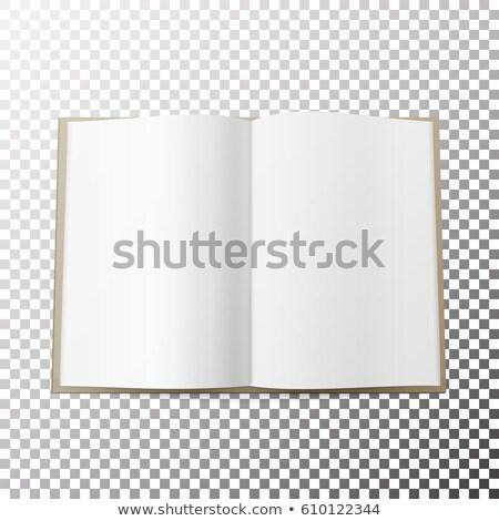 オープン 雑誌 ベクトル ダブル 図書 孤立した ストックフォト © pikepicture