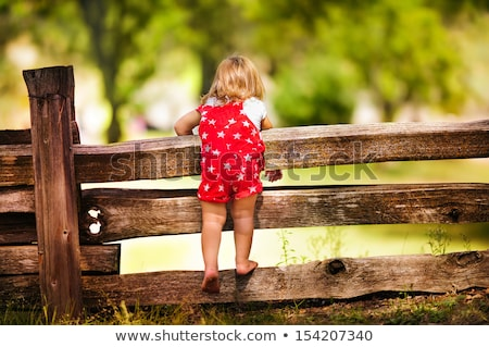 Children on fence Stock photo © IS2