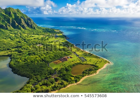 Pacific Ocean, Oahu, Hawaii Stock photo © kraskoff