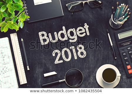Budget 2018 on Chalkboard in the Office. 3d Stock photo © tashatuvango