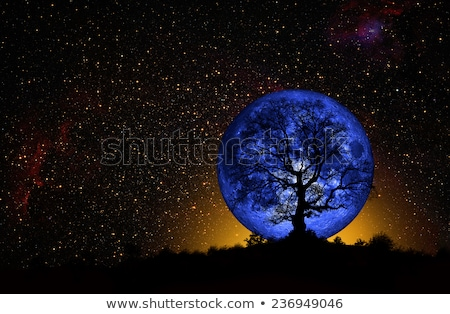 Blue Moon Rising Stock photo © suerob