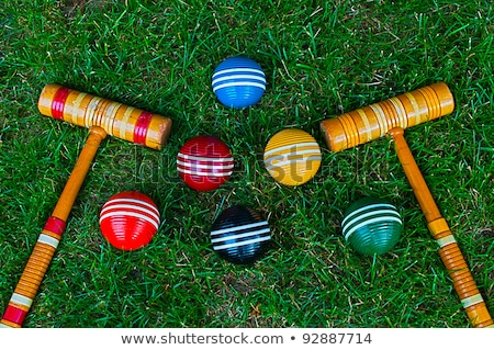 Colorful Croquet Balls Stock photo © 2tun