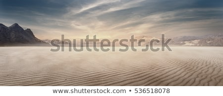 woestijn · landschap · illustratie · cartoon · cactus · zand - stockfoto © bluering