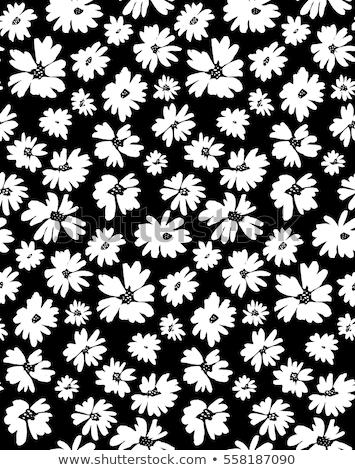 Jonge bloempatroon organisch bloem Stockfoto © Soleil