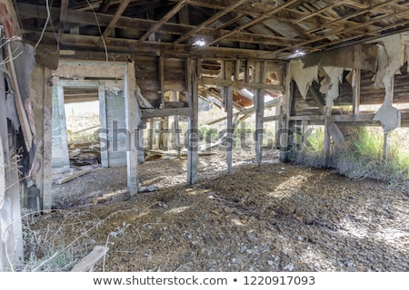 Abandoned house sinking in marshland. Stock photo © yhelfman