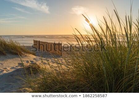 ストックフォト: 風景 · ビーチ · ポルトガル · 日没 · 空 · 水