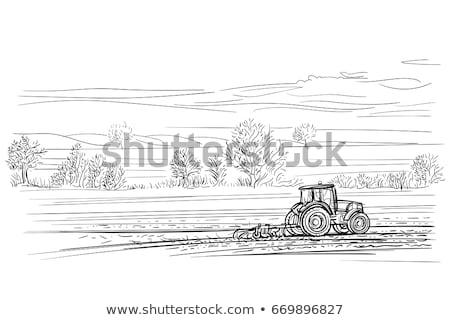 Traktör tarım makinalar yalıtılmış ikon vektör Stok fotoğraf © robuart