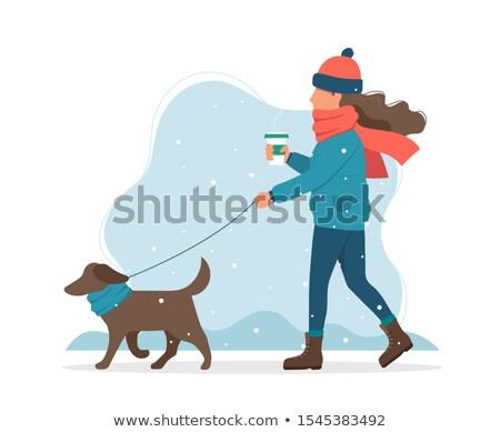 Femme marche chien saison d'hiver activité extérieur Photo stock © robuart