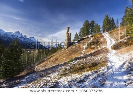 Kő park Kanada víz tavasz tájkép Stock fotó © benkrut