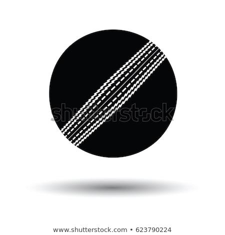 Cricket Ball And Wickets Stock photo © albund