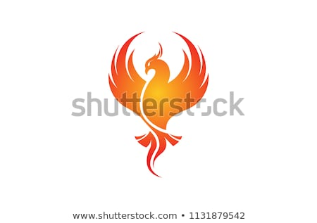 phoenix · pássaro · mítico · chamejante · fogo · natureza - foto stock © krustovin