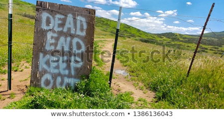未舗装の道路 · を実行して · 茂み · 土地 · 道路 · 青 - ストックフォト © feverpitch