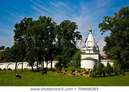Nikolo-Ugreshsky Monastery, Moscow region, Russia Stock photo © borisb17