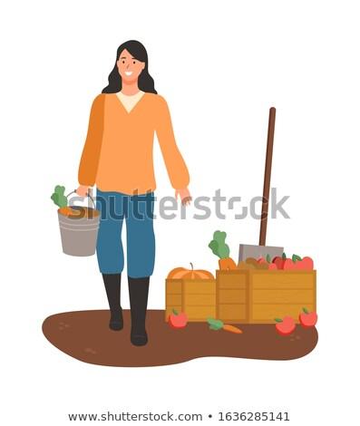 woman on harvesting season lady with carrots stock photo © robuart