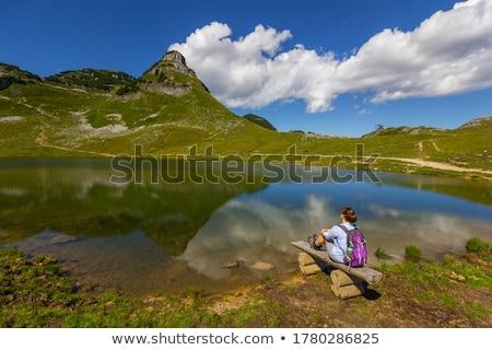 Альпы горные Австрия мнение древесины лес Сток-фото © borisb17
