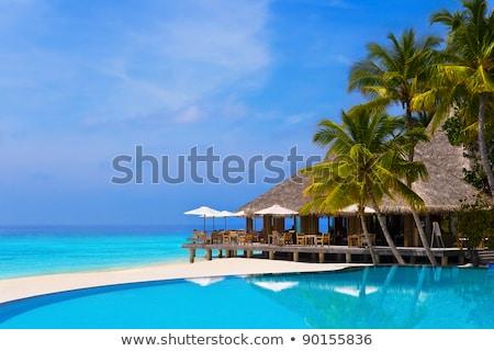 Piscina palmeras tropicales edificios techo vacaciones Foto stock © galitskaya