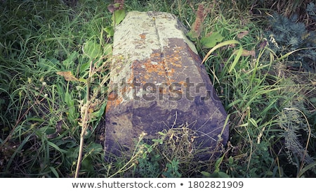 Old ancient tombstone Stock photo © grafvision