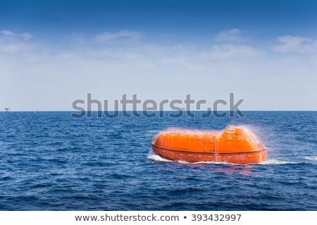 Passenger Liner Marine Travel Vessel Rescue Boat Stock photo © robuart