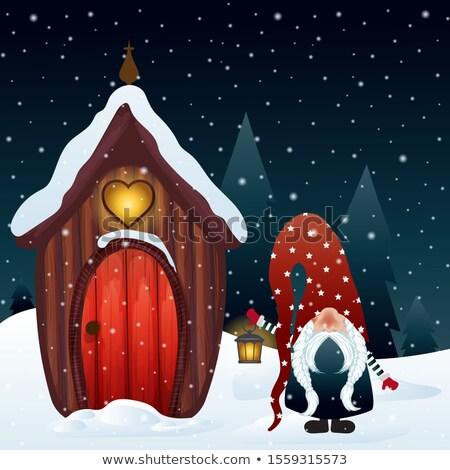 Christmas gnom magiczny domu drewna Zdjęcia stock © balasoiu