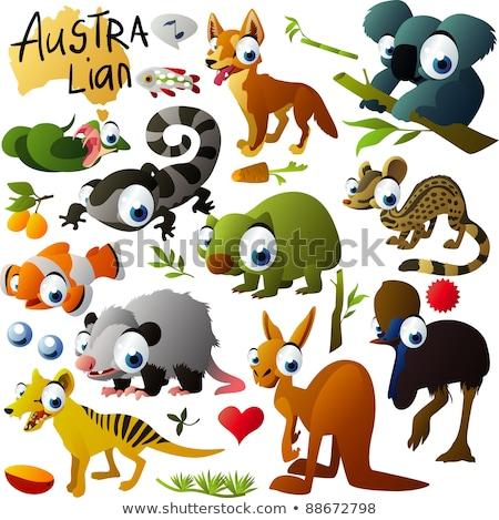 Onderwijs illustratie cartoon australisch dieren wereldkaart Stockfoto © izakowski