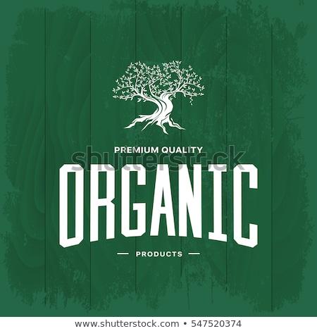 Oliwy premia jakości produktu plakat wektora Zdjęcia stock © pikepicture