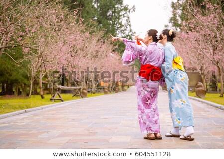изображение гейш женщину Японский кимоно указывая Сток-фото © deandrobot