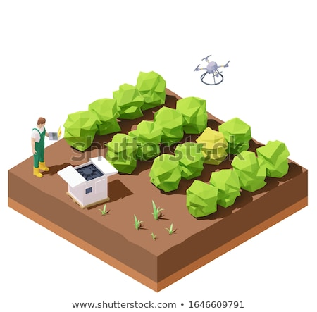 Vector isometric agricultural drone inspecting crop field Stock photo © tele52