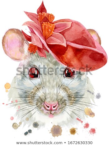 Aquarel portret witte rat Rood hoed Stockfoto © Natalia_1947
