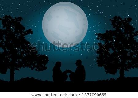 Ay ışığı valentine arka plan gece karanlık rüya Stok fotoğraf © Bananna