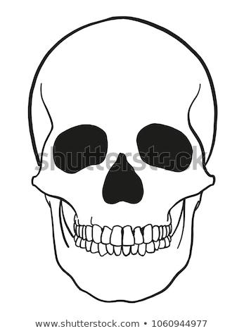 Morti cranio fumo icona vettore contorno Foto d'archivio © pikepicture