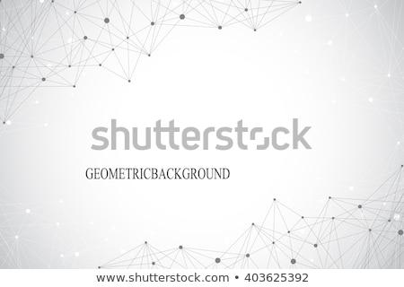 Soyut fraktal kaos hatları bağlantı dizayn Stok fotoğraf © SArts