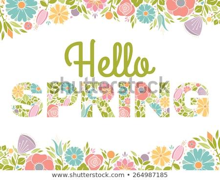 Tulips spring frame Stock photo © ElaK