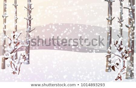 Hóvihar erdő nehéz hóesés hegy hó Stock fotó © skylight
