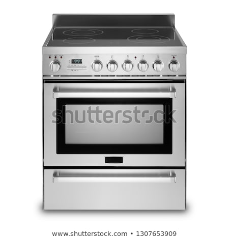 Electric cooker oven isolated Stock photo © ozaiachin