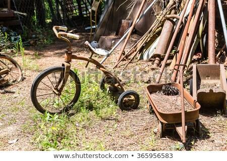 Rustik beyaz geri tekerlek taşıma yalıtılmış Stok fotoğraf © prill