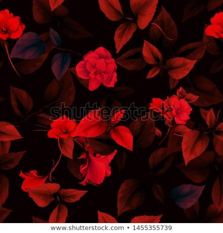 kırmızı · çiçek · el · yapımı · suluboya - stok fotoğraf © Galyna