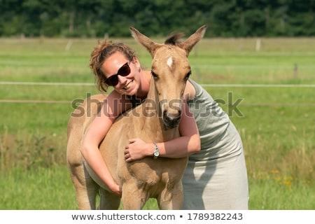 équitation · femme · heureux · cheval · sable · portrait - photo stock © photography33