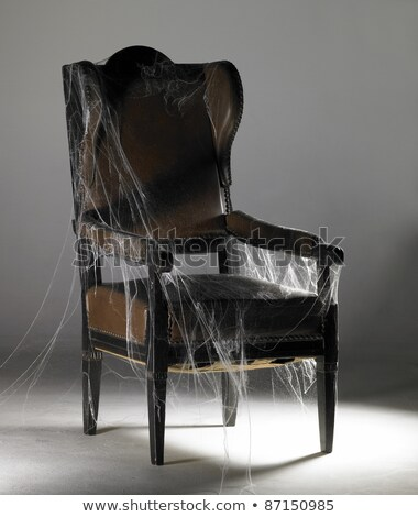 Stock photo: brown wing chair and cobwebs